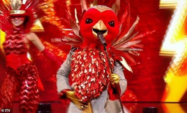 Robin on 'The Masked Singer' UK